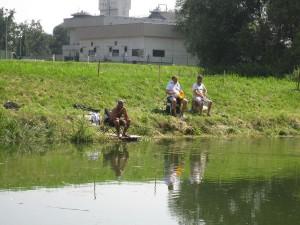 teichfest-2012-0086