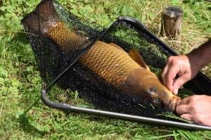 Preisfischen 2016 0026
