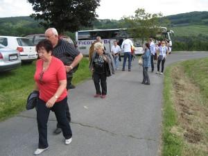 weinblutenfest-2012-0001